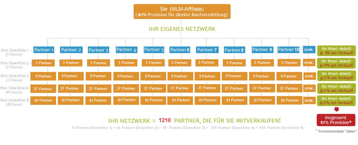 MLM-Network Entwicklung